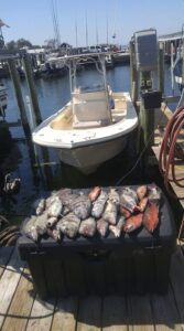 Fishing Tours with Five O'Clock Charlie Boat Tours brings in the Big Catch