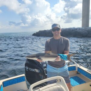 Cobia starting to show up